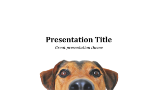 Dog Keynote Template